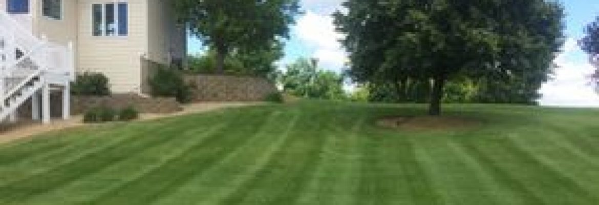Derrel's Lawn Care & snow removal services Mn
